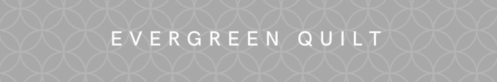 Evergreen Insta Button